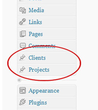 Custom post types of clients and projects