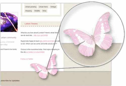 LULR butterfly